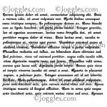 Joggles Cling Mounted Rubber Stamp - Nonsense Latin Text [33634]