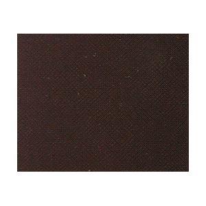 Jacquard Procion MX Dye - 119 Chocolate Brown