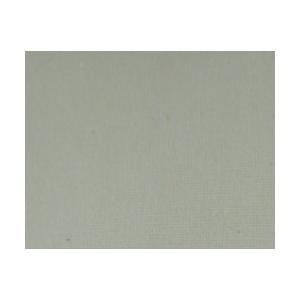 Jacquard Procion MX Dye - 170 Ecru