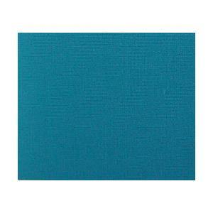 Jacquard Procion MX Dye - 201 Robin's Egg Blue