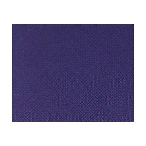 Jacquard Procion MX Dye - 231 Violet
