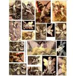 Joggles / Altered by Design Collage Sheets - Fairy Dust