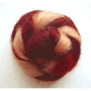 Coopworth Wool - Penny Lane
