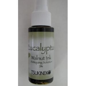 Tsukineko Walnut Ink Spray - Eucalyptus