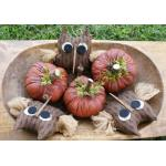 Fiddlestix Designs - Harvest Thyme Bowl Fillers