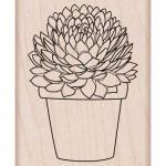 Hero Arts - [G6130] Potted Succulent