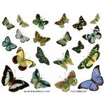 Joggles Collage Sheets - Blue And Green Butterflies III [JG401061]