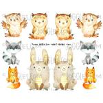 Joggles Collage Sheets - Forest Friends [JG401111]