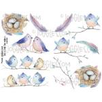 Joggles Collage Sheets - This Is For The Birds I [JG401105]