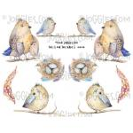 Joggles Collage Sheets - This Is For The Birds II [JG401110]