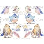 Joggles Collage Sheets - This Is For The Birds III [JG401112]