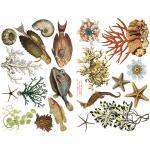 Joggles Collage Sheets - Sea Life II [JG401010]