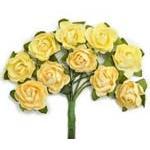 Kaisercraft Flowers & Blooms