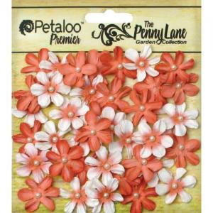 Petaloo Penny Lane Mini Pearl Daisies - Antique Peach [1839-051]