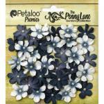 Petaloo Penny Lane Mini Pearl Daisies - Black [1839-060]
