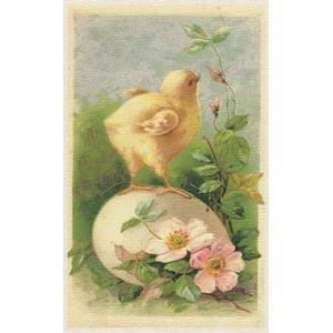 Printed Fabric Image - Chick on Egg