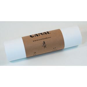 "Saint Armand Canal Paper - 11"" x 25' Roll"