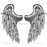 Stampotique Originals - [7416] Angel Wings - 2 Sided