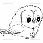 Stampotique Originals - [5835] Mr Owl