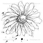 Stampotique Originals - [14014] Kassa's Bloom