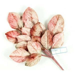 Velvet Leaves [06] Beige/Pink/Green