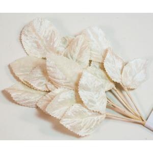 Velvet Leaves [02] Light Ivory