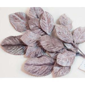 Velvet Leaves [12] Gray