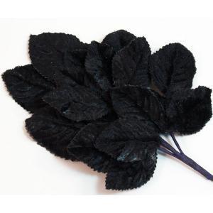 Velvet Leaves [14] Black