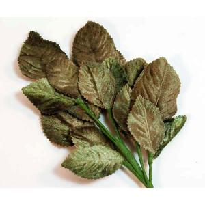 Velvet Leaves [18] Multi Green