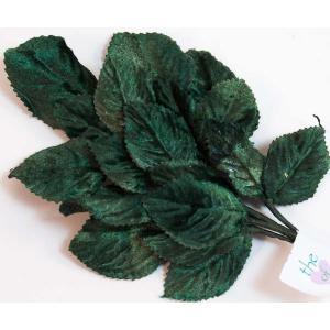Velvet Leaves [21] Dark Green